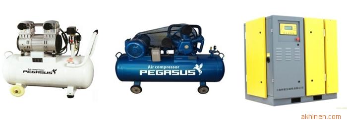 Hình ảnh máy nén khí Pegasus Piston và trục vít